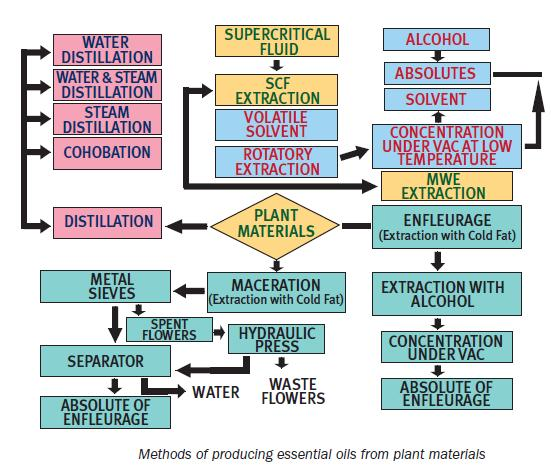 Source : Extraction Technologies for Medicinal and Aromatic Plants ...